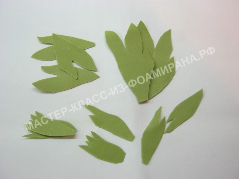заготовки листьев пиона