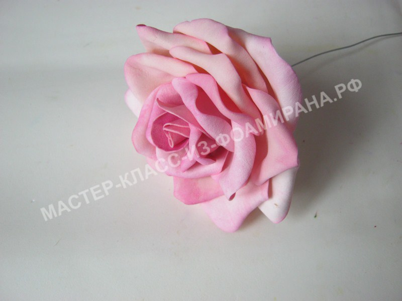 формирование раскрытой розы