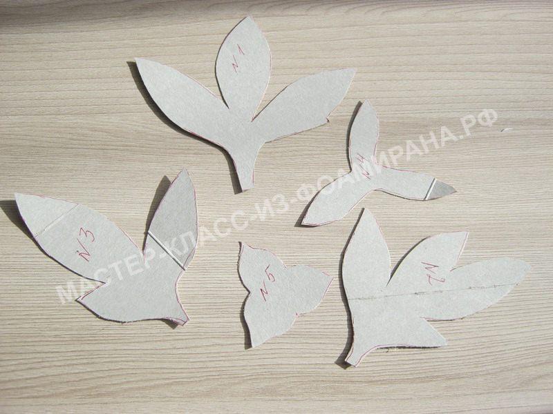 выкройка листьев и чашелистиков пиона