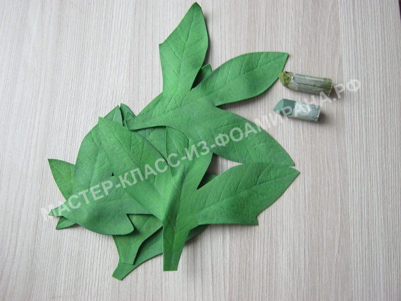 тонировка листьев и чашелистика