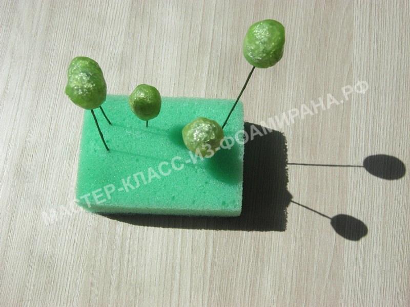 формирование ягодки