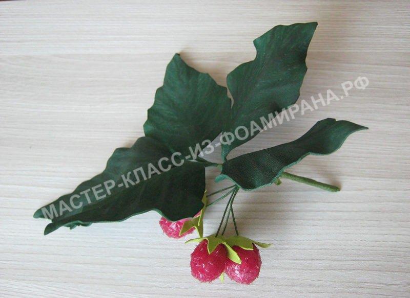 Мастер-класс веточка малины из фоамирана,пошаговое фото.