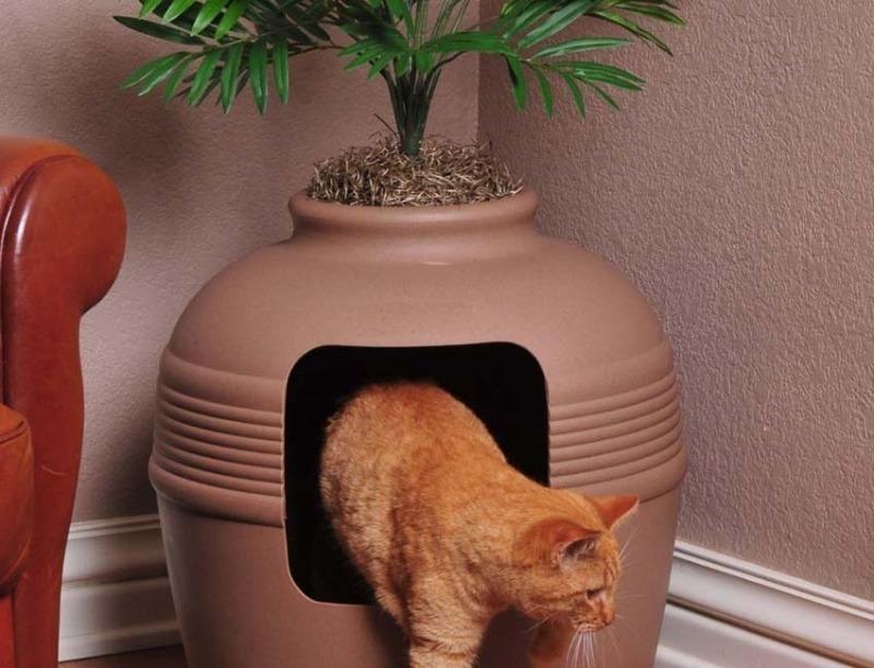 5 способов замаскировать кошачий лоток с пользой для дома