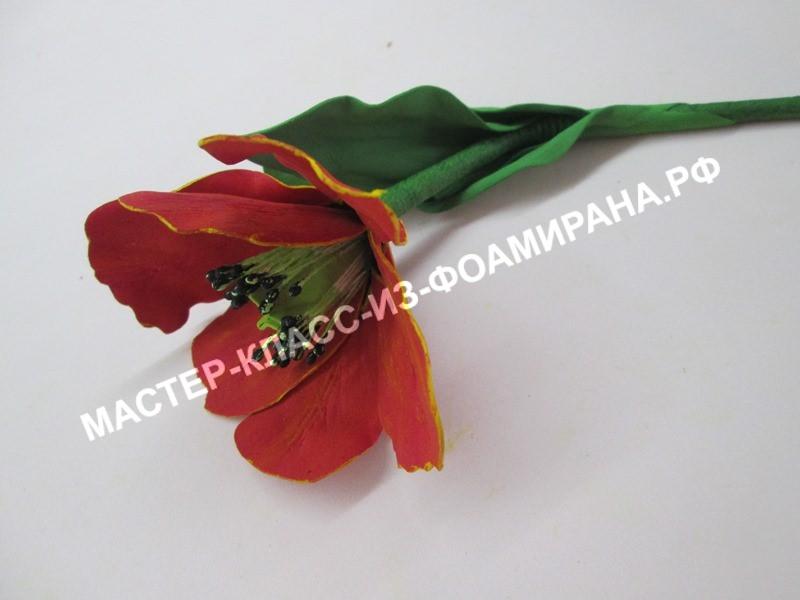 Фоамиран мастер класс тюльпаны из