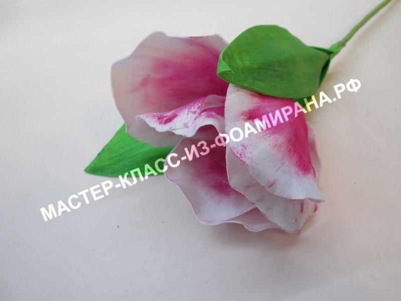 "мастер-класс тюльпан ""Роман Эмпайр""из зефирного фоамирана;"