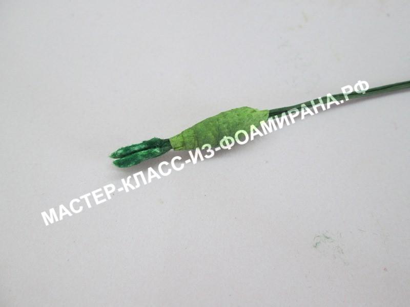 формирования пестика