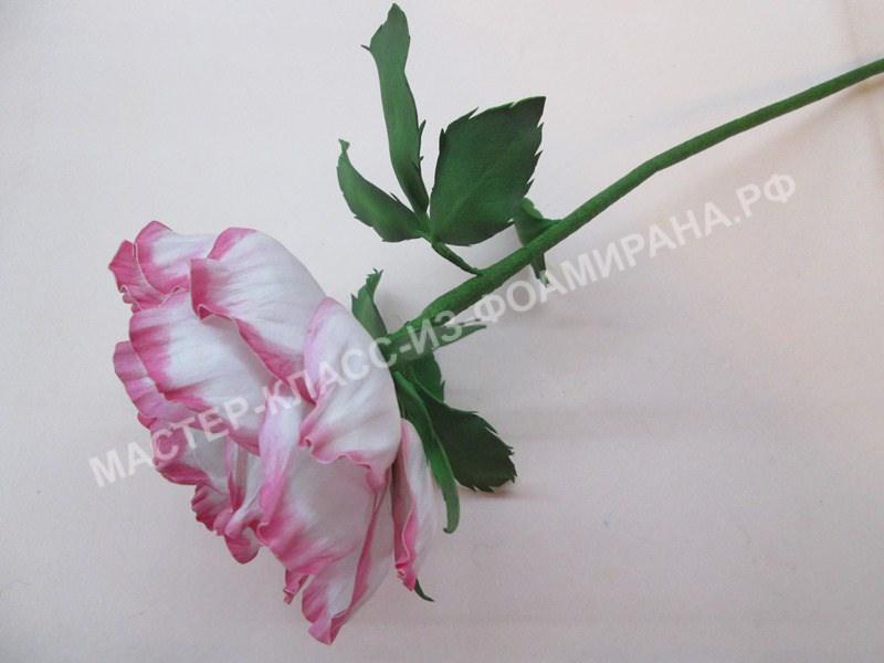 Мастер-класс: Нежная роза из зефирного фоамирана