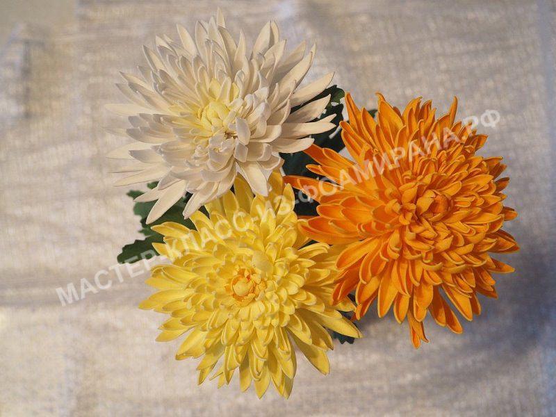 Какие цветы на первое сентября фото