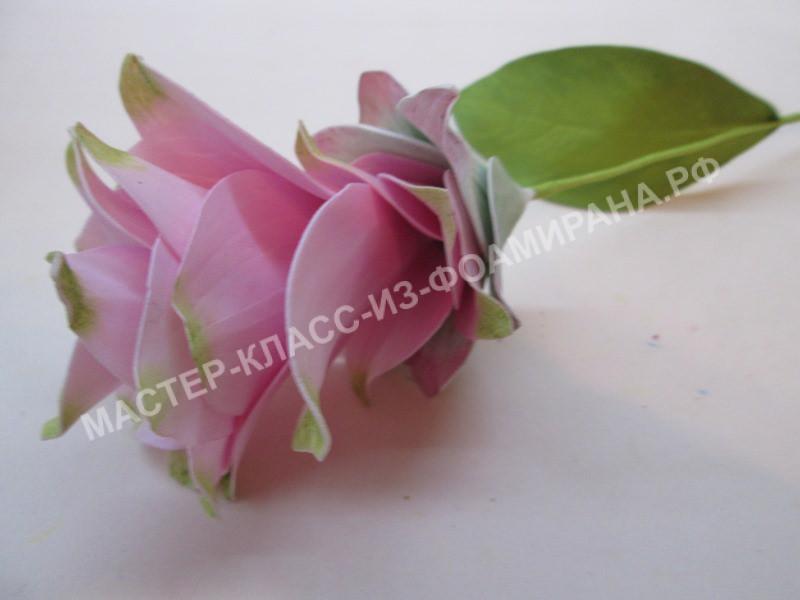 мастер- класс цветок куркумы из зефирного фоамирана
