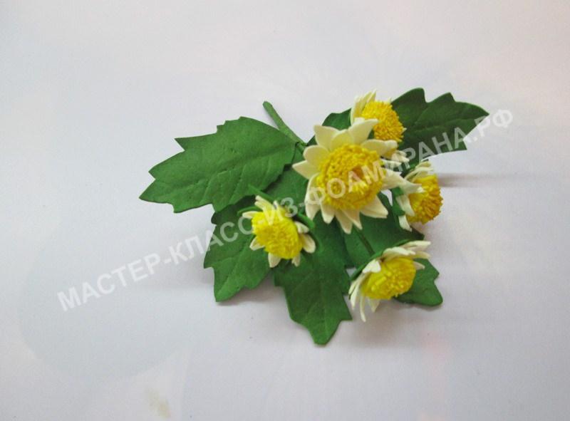 фото мелкой хризантемы
