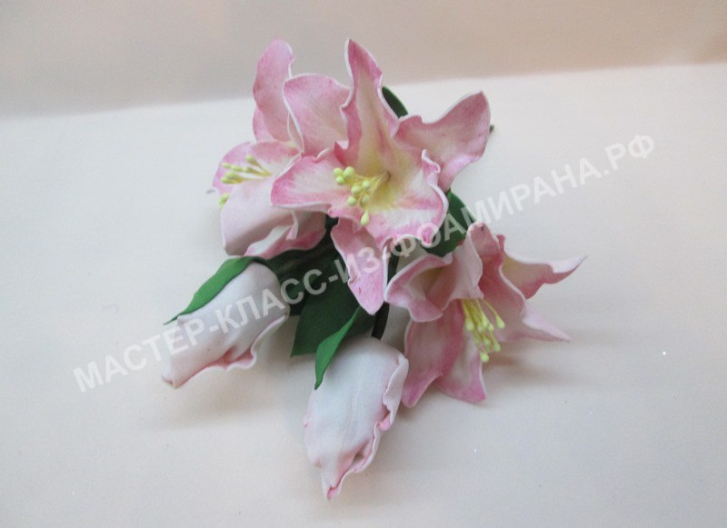 фото веточки лилии