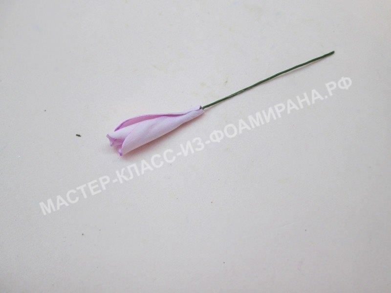 формирование розового бутона