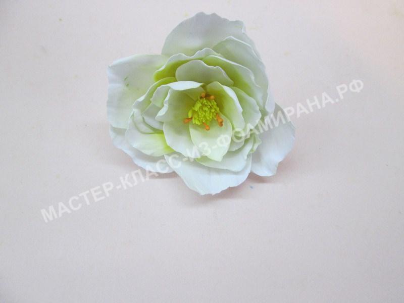 "мастер-класс резинка со цветком из фоамирана ""Белый шиповник"""