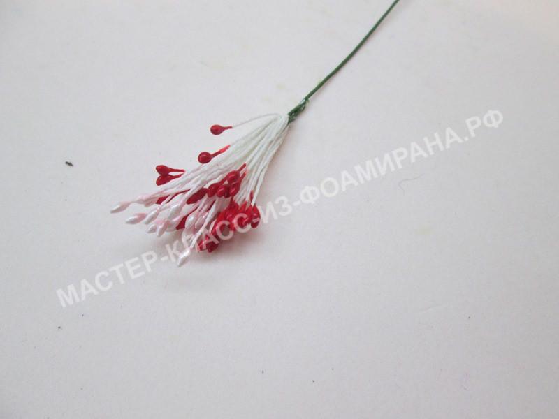 формирование серединки цветка