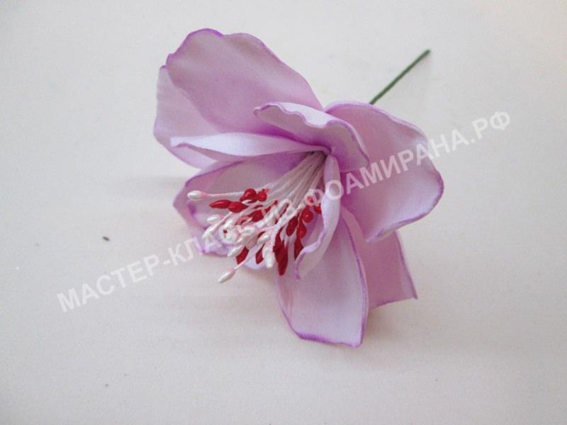 формирования цветка