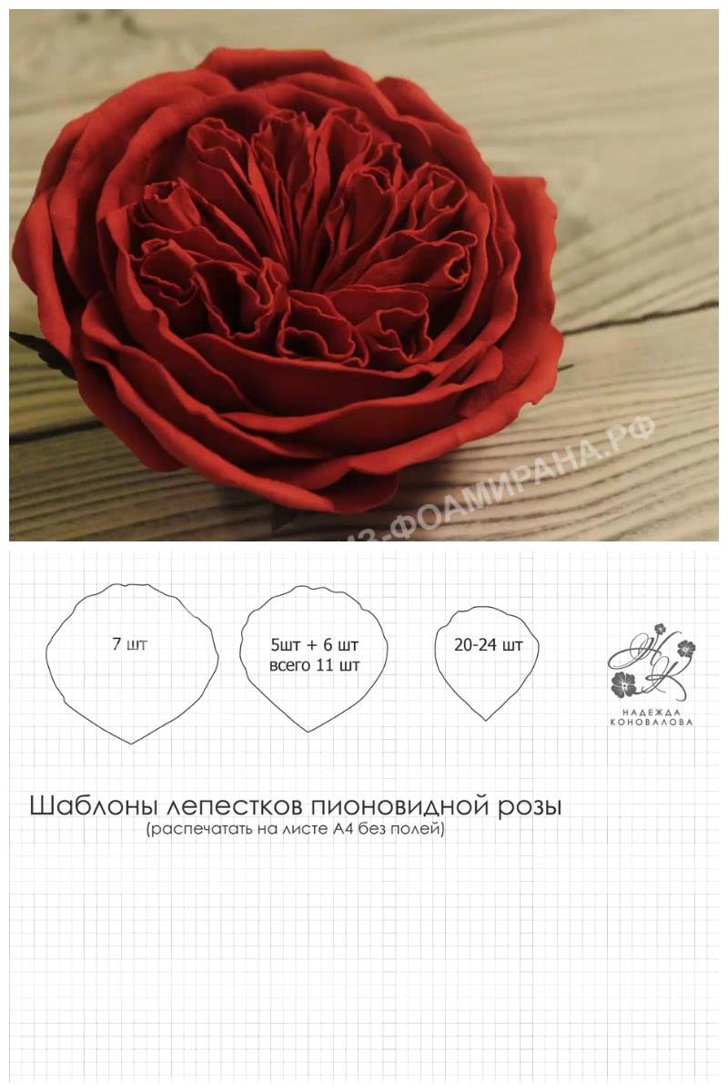 Выкройка пионовидной розы