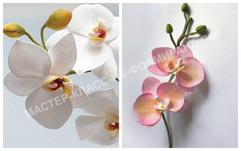 Орхидея из зефирного фоамирана