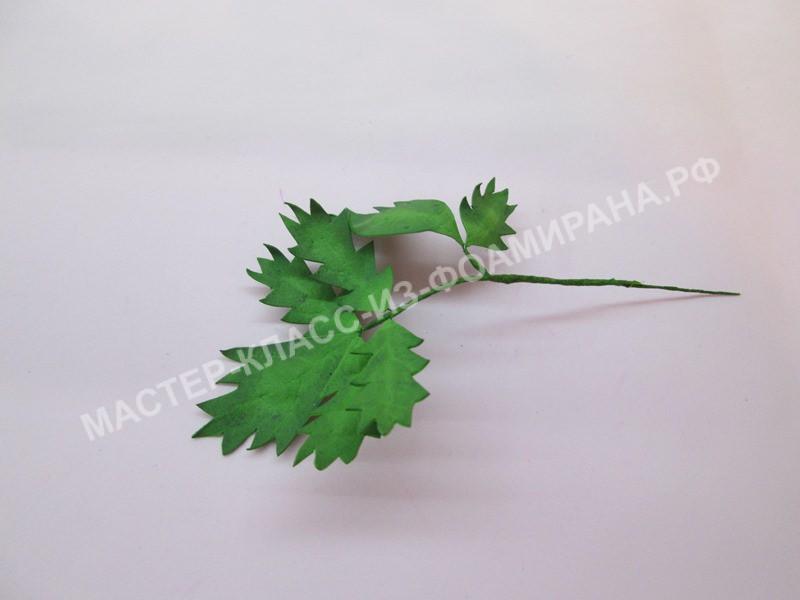 формируем веточку листьев