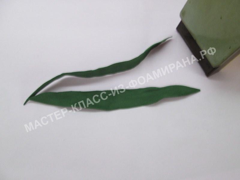 формирование и обработка листьев