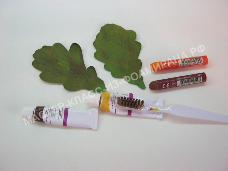 тонировка листьев дуба