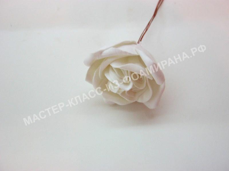 формирование нераспустившейся розы