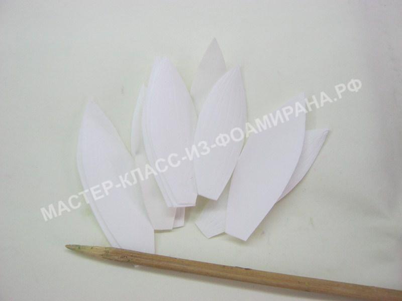 подготовка белых лепестков