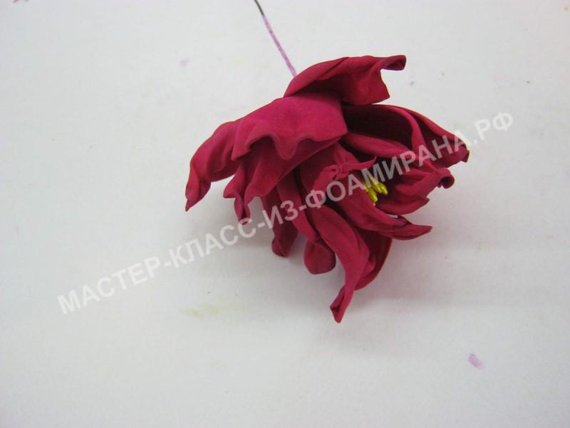 формирование цветка