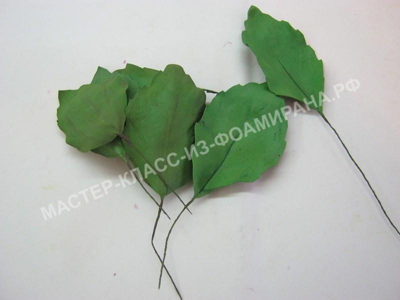 приклеивание литонов к листьям