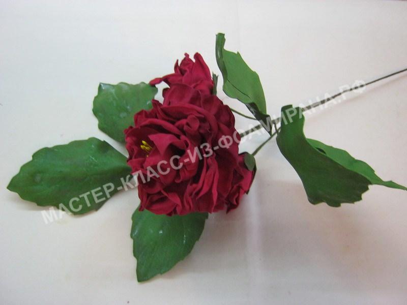 сборка ветки розана