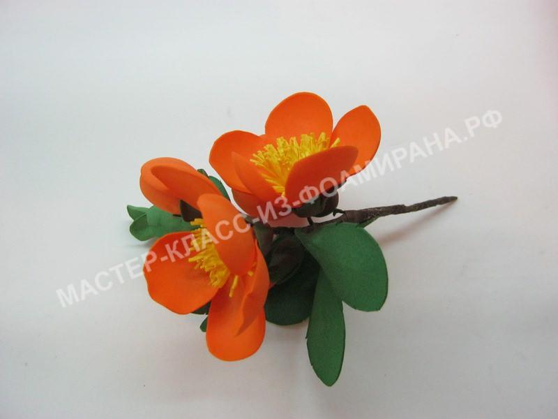Мастер-класс весенние цветы из фоамирана,пошаговое фото.