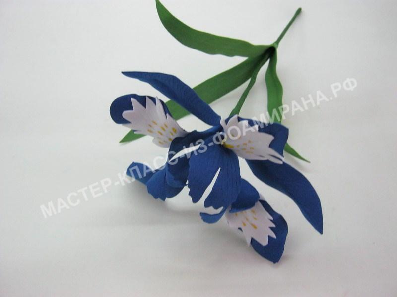 мастер-класс весенние цветы из фоамирана,пошаговое фото