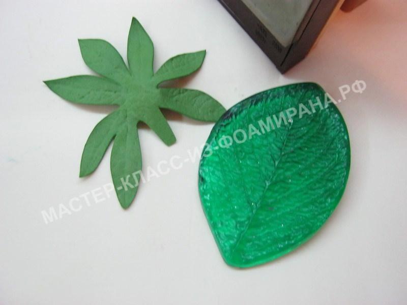 обработка листьев на молде
