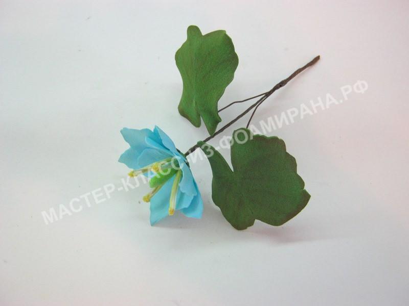 Джофферсония -синие цветы из фоамирана.