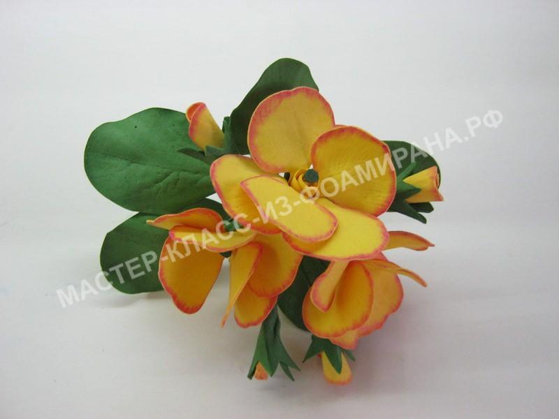 мастер-класс Первоцвет цветы из фоамирана, пошаговое фото