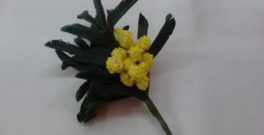 Цветы из фоамирана мк для начинающих видео своими руками