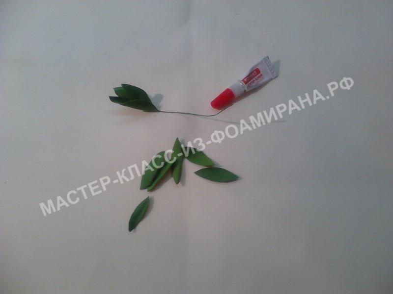 формирование веточки листьев