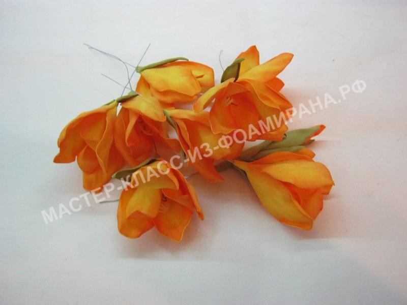 цветочки гладиолуса