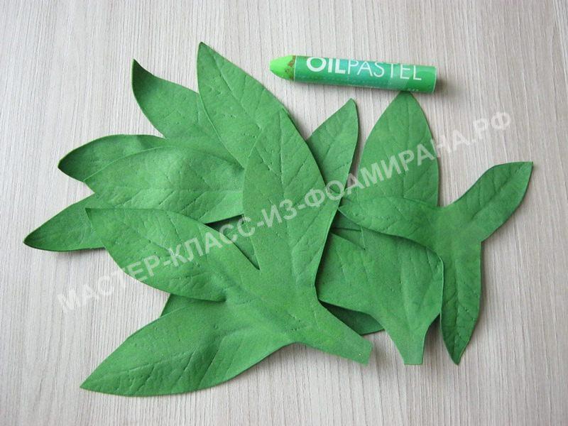 тонировка листьев и чашелистиков