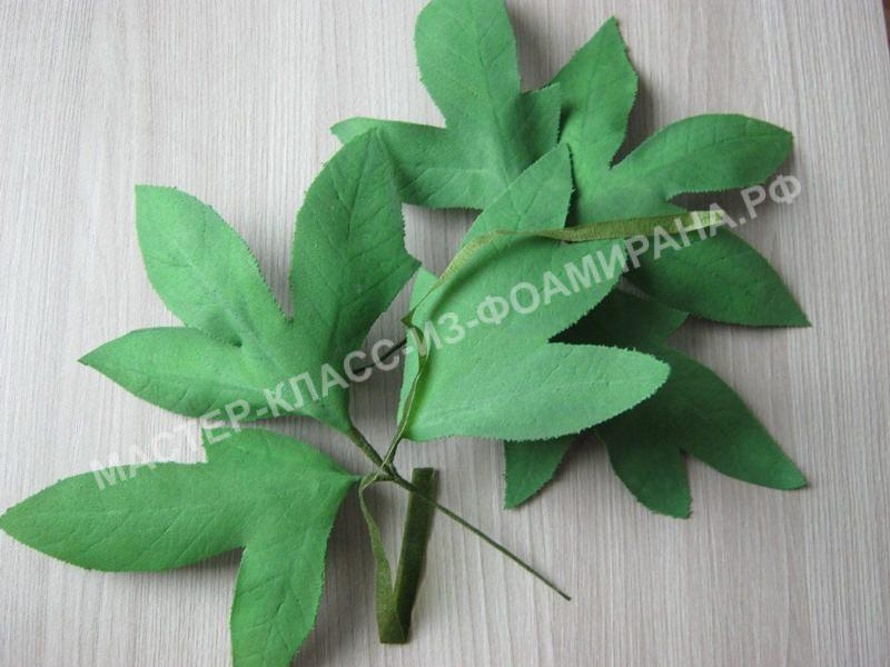 сборка веточки листьев