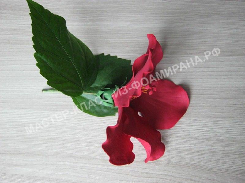 сборка веточки листьев и цветка