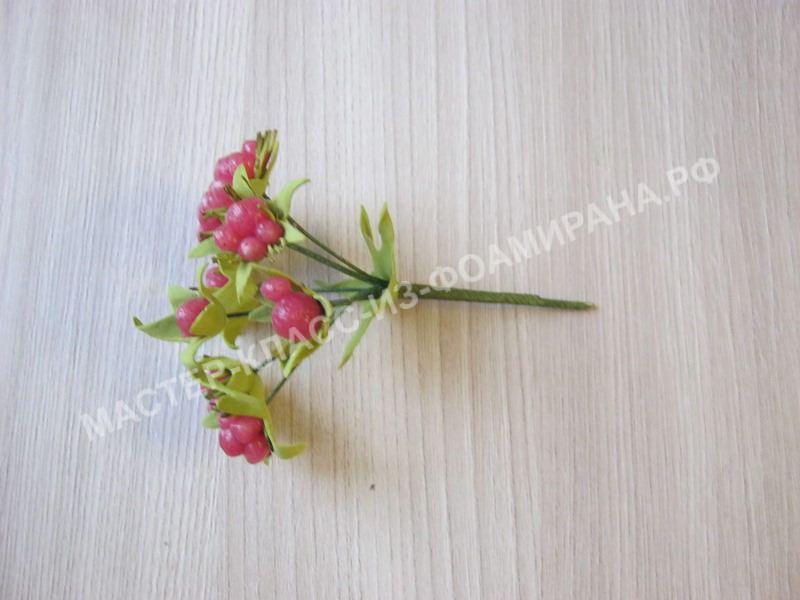 формирование соцветия ягодок