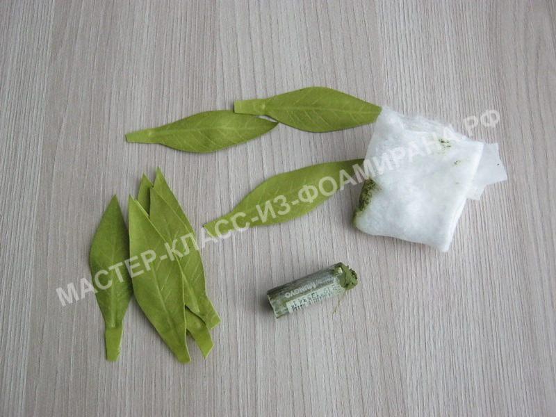 тонировка листьев
