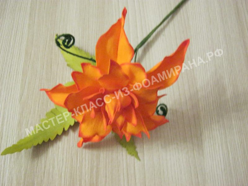 Мастер-класс цветущий папоротник, пошаговое фото